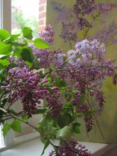 botanisk have odense escort randers